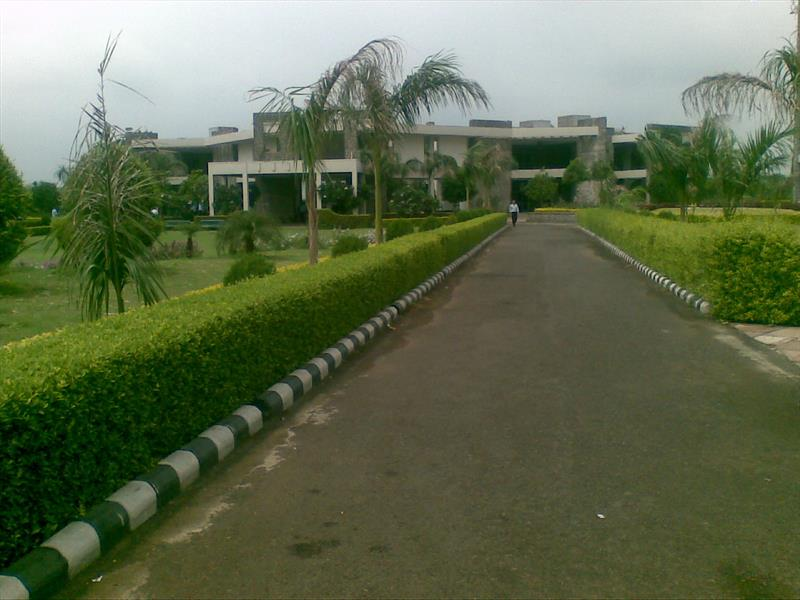 RCC road inside JUET campus Guna