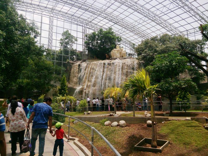 Open Gallery for Butterflies in Ramoji Film City