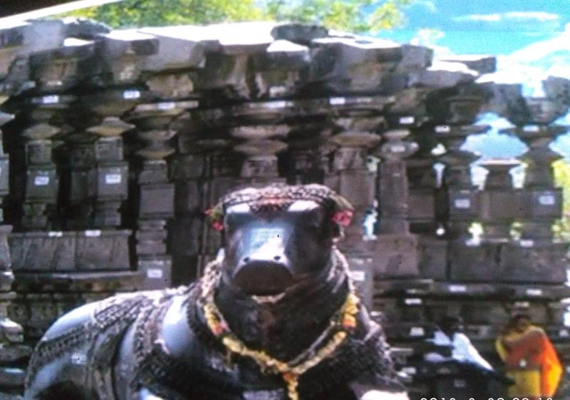 Sculpture of Nandi at Thousand Pillars Temple, Warangal, Telangana