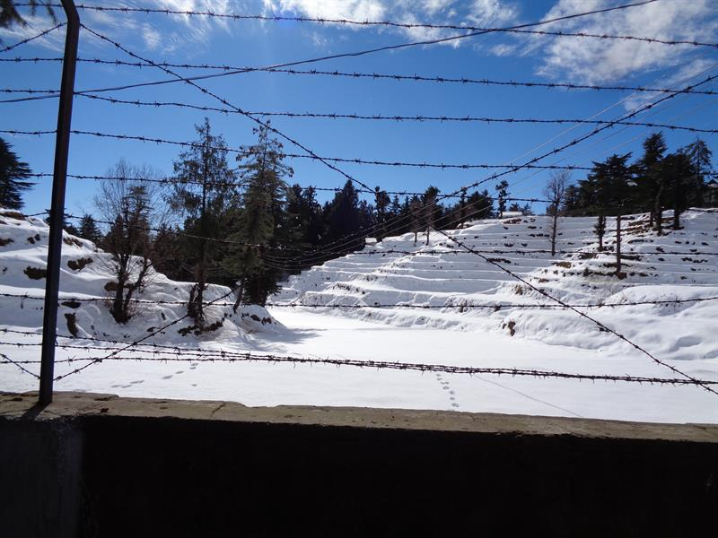 terraces mountain cover with layer of snow -shimla