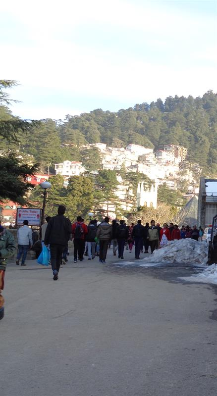 Local view - Shimla