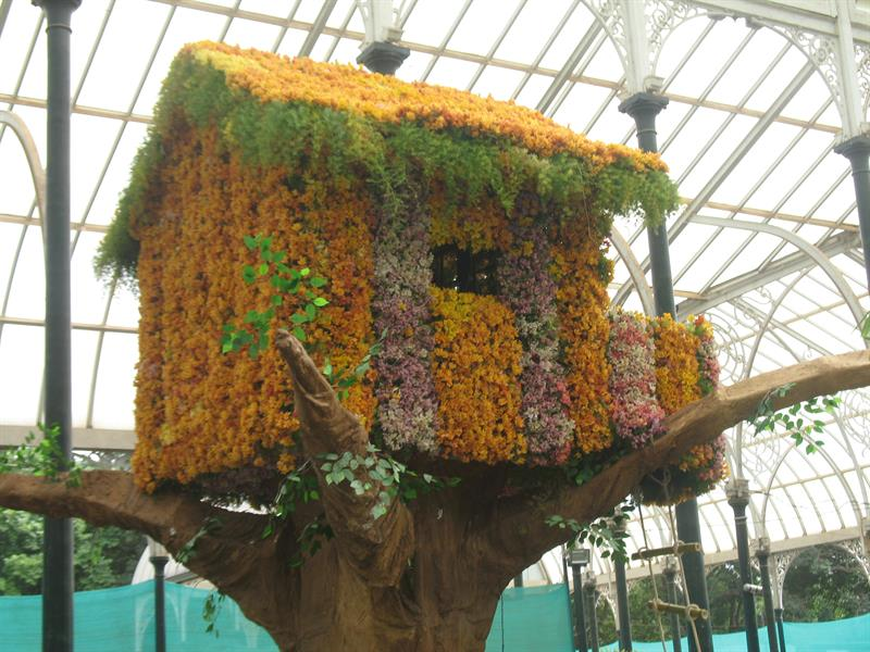 Fantastic Tree House made of flowers at Lalbagh