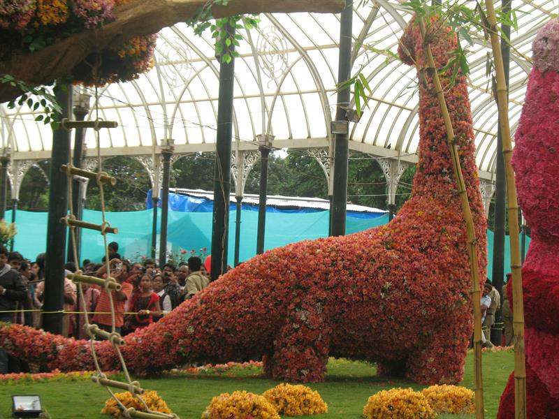 Dinosaur made of flowers at Lalbagh