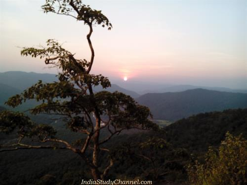 Jenukal Gudda - Sunset Point