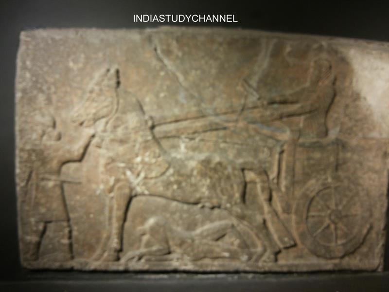 An Assyrian relic-Royal Chariot obtained from Babylonian city as seen in Chhatrapati Shivaji Museum