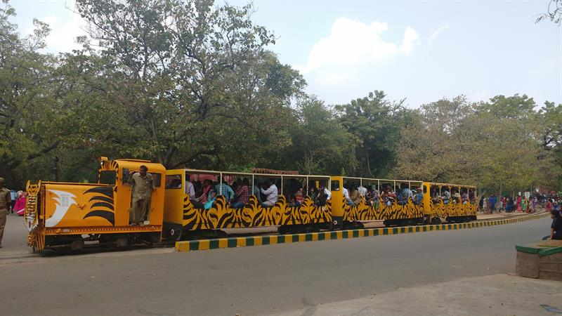 Amazing Narrow Guage Toy Train at Nehru Zoological Park,Hyderabad