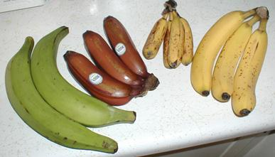 Varieties of Bananas