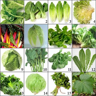 Green Vegetables Names With Pictures