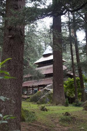 Kiala Forest in Katkhai