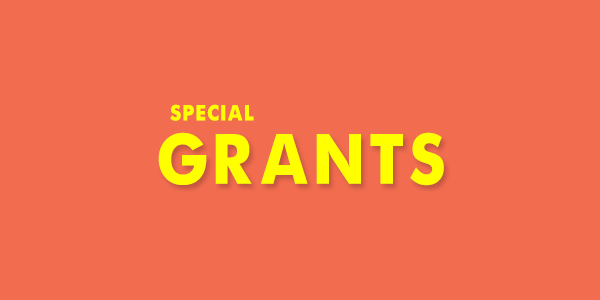 Special Grants to Study Abroad