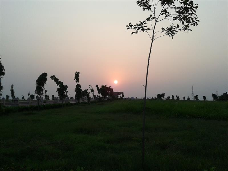 View of sunset from the mid of eco park lucknow
