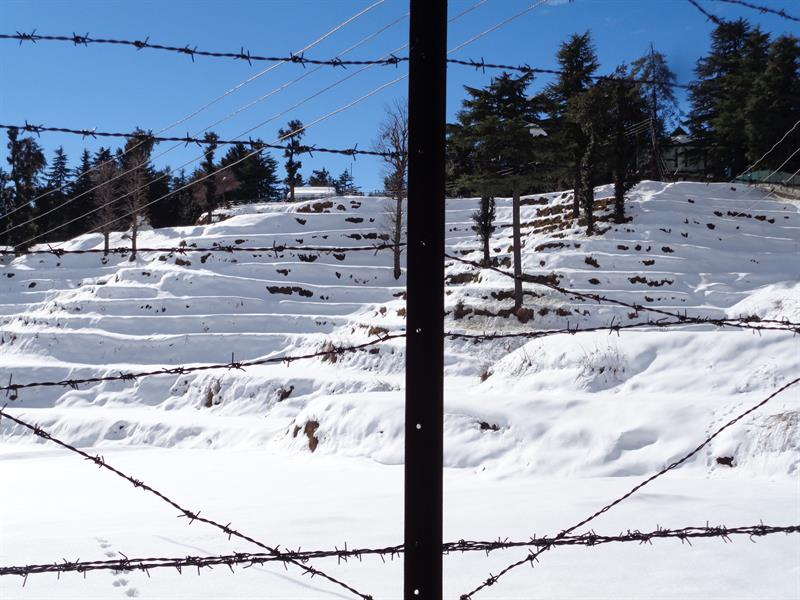 terrace mountain with snow in shimla