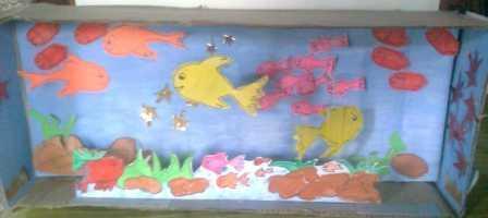 Aquarium from shoe box