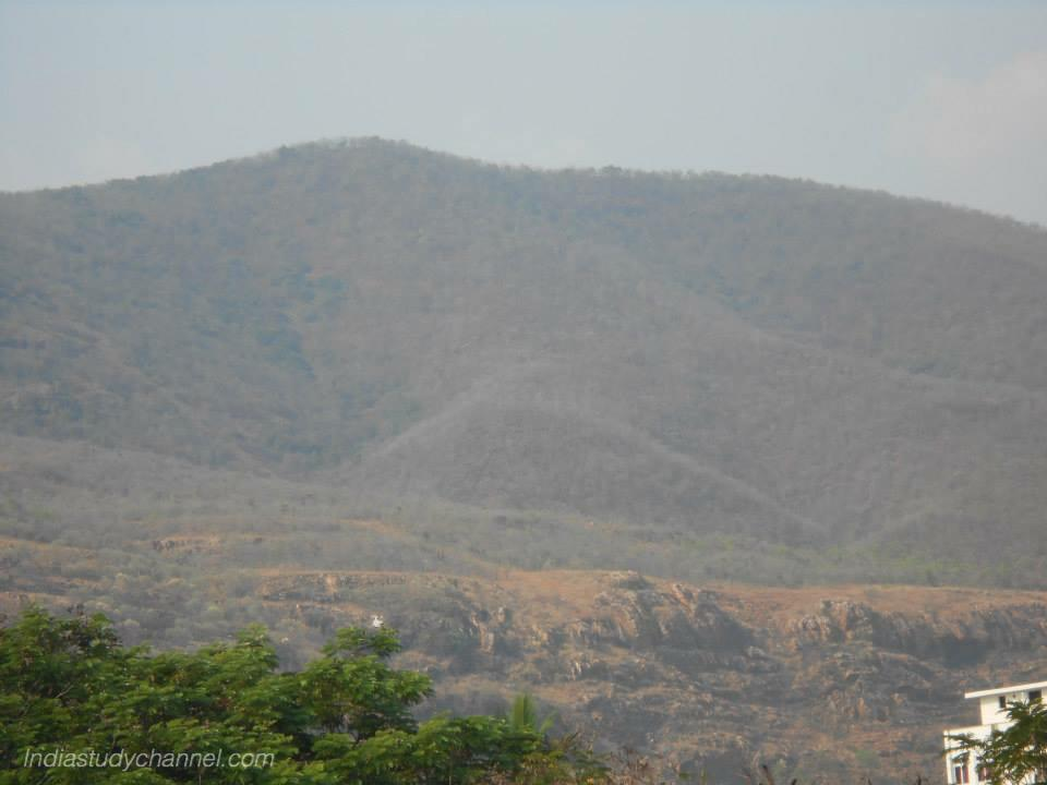 Picture of hills at tirumala tirupati devasthanam